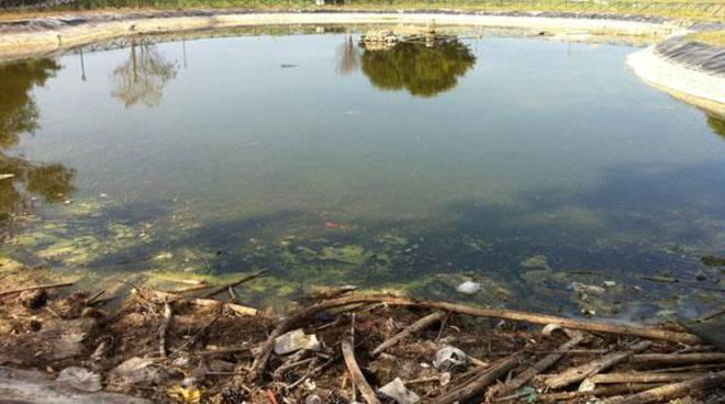 Laghetto di villa guglielmi senz 39 acqua a rischio for Laghetto pesci rossi e tartarughe