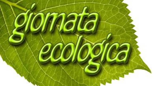 Giornata ecologica in località Cioccati