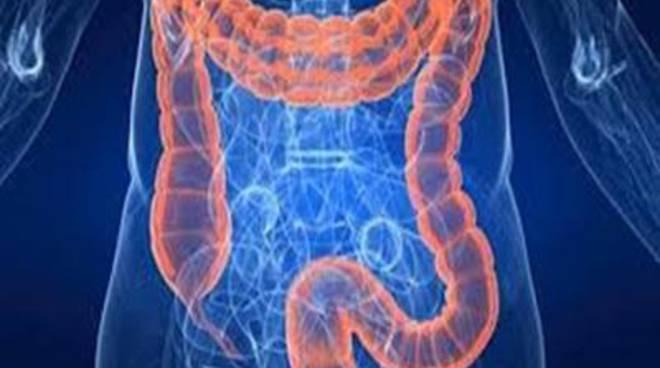 Al via gli screening per il cancro del colon retto e della mammella