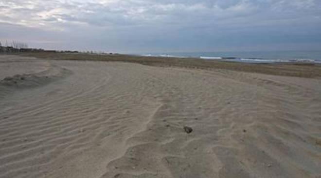 Spiagge e parchi puliti per le vacanze pasquali