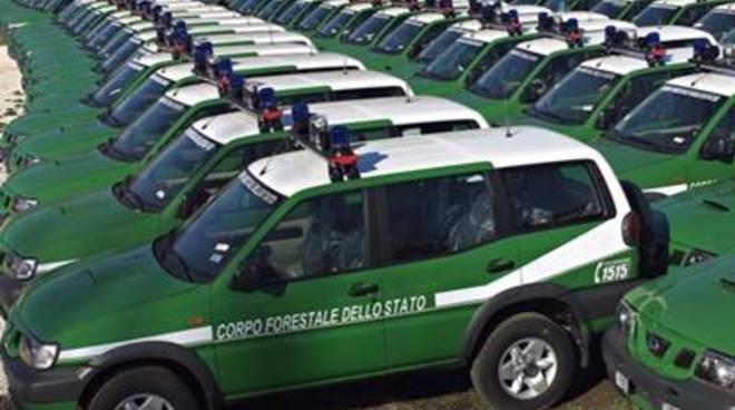 """Forestale, Fdi: """"Perdiamo un corpo di Polizia con una funzione importantissima"""""""