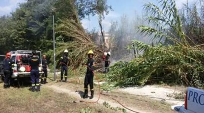 Incendio di sterpaglie minaccia Villa Guglielmi