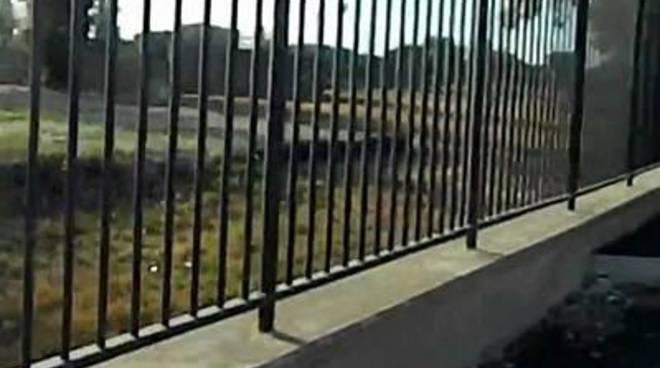 """Parco Forti (ex Bezzi), Gil: ""Quanti soldi buttati"""