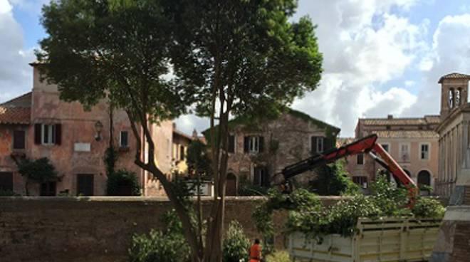 Al via la ristrutturazione dell'area verde al Castello di Giulio II