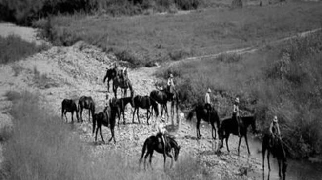 'TransUmando', tre giorni di cammino antico e universale, di popoli e di animali