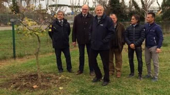 Piantati 24 alberi a Villa Guglielmi e al Bambin Gesù di Palidoro