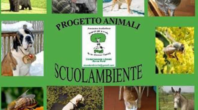 Scuolambiente in soccorso di cani e gatti randagi