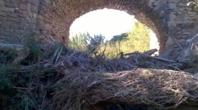 Volontari ripuliscono la luce del ponte medioevale per salvarlo dalle piogge invernali