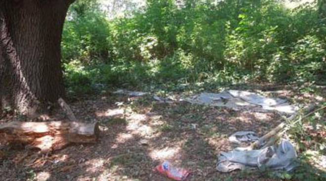 """M5S: """"Degrado e danni ambientali nel Parco Pubblico di Palo"""""""