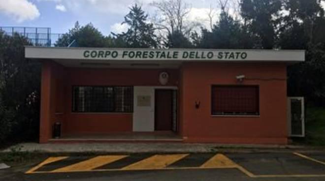 Nuova sede del Corpo Forestale dello Stato presso Selva dei Pini