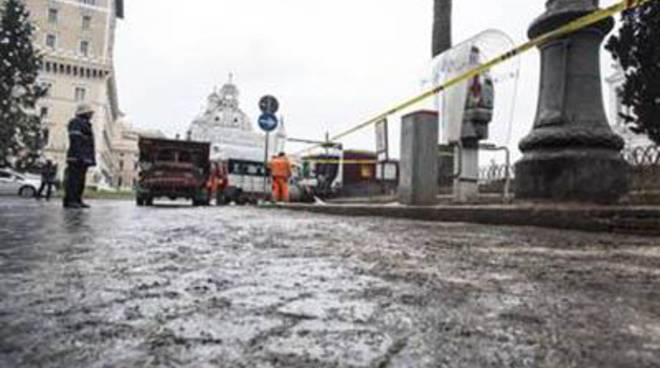 """Palozzi Fi): """"Con i topi e gli stormi per Roma c'è stato un grande danno di immagine"""""""