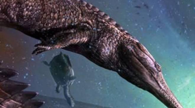 Scoperto il più grande coccodrillo marino