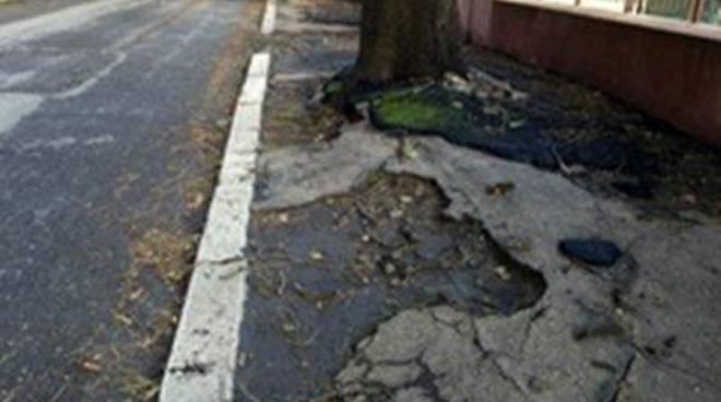 Sos Soccorso Cittadino: rilevate due grandi buche a Via Torremuzza