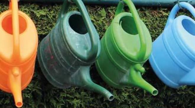 Macchiagrande: secondo corso di giardinaggio