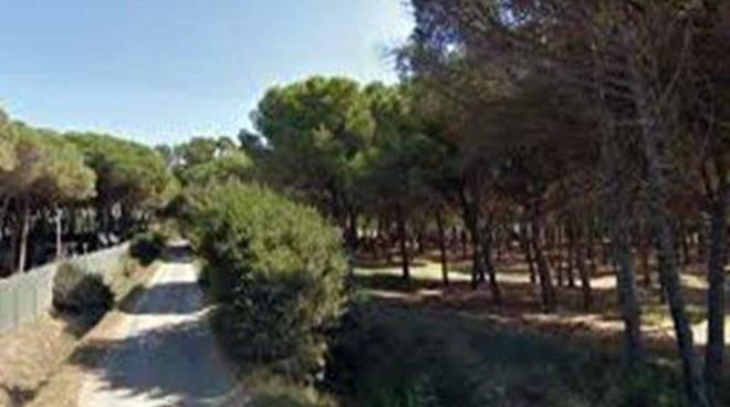 Parco della Frasca: ultima chanche per il Comune