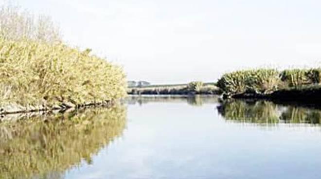 Partito il percorso popolare partecipato per gli ecosistemi
