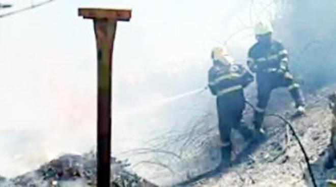 Antincendio boschivo, aperte le iscrizioni ai corsi di Protezione civile