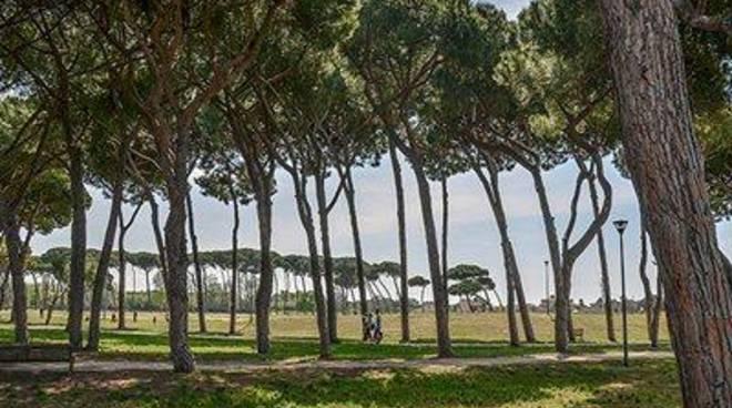 """Villa Guglielmi, Galluzzo: """"Martedì prossimo si svolgerà l'Assemblea sul turismo"""""""
