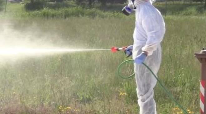 Campagna anti-zanzara: il 5 e 6 maggio partono gli interventi