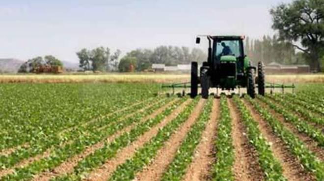 L'agricoltura un settore strategico per la citta'