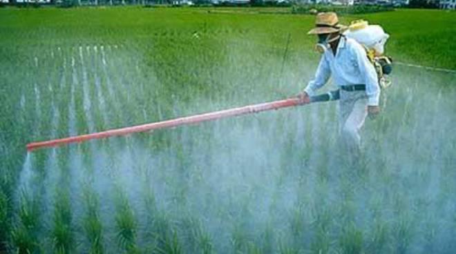 """Pesticidi nelle acque, Geologi Lazio: """"La nostra regione indietro nel monitoraggio"""""""