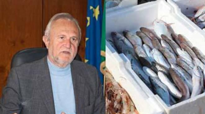 """Sequestro del pesce, Montino: """"Un successo garantito dalla collaborazione interforze"""""""