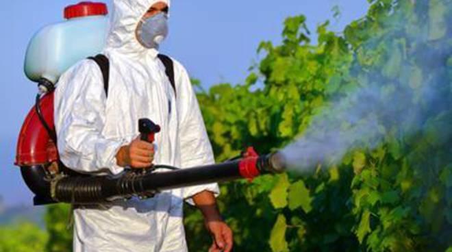 Al via la disinfestazione da zanzare e scarafaggi su tutto il territorio