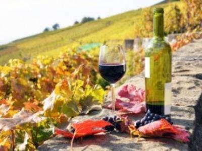 Vacanze in Sud Tirolo: sulla Strada del Vino