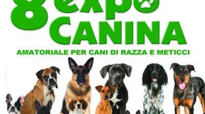 VIII edizione dell'Expo Canina