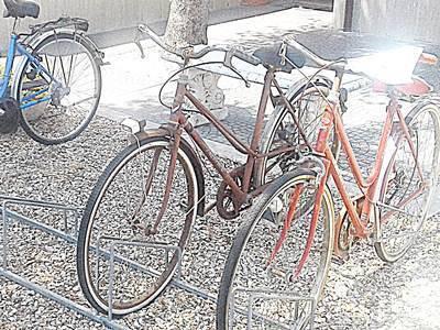 Ladri di biciclette.A Fregene tornano i furti anni '50