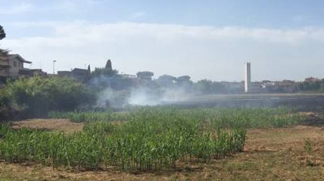 Nuovi incendi ad Ostia Antica