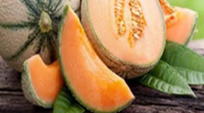 Pescia Romana rinnova la tradizione con la 29esima Sagra del Melone