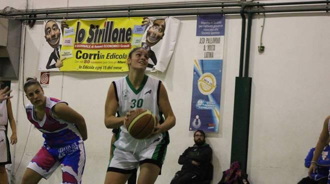 bull basket latina