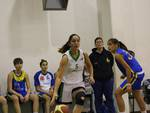 basket latina