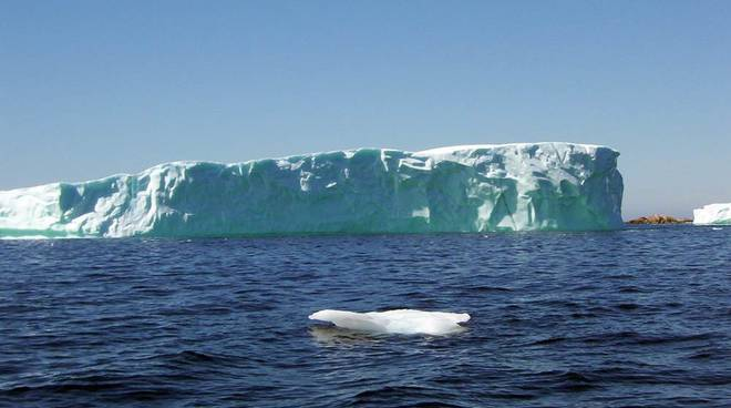 iceberg antartide