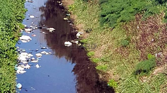 Degrado e rifiuti nei canali di Bonifica