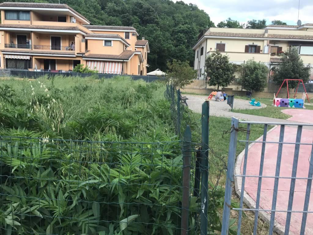 aree verdi aranova