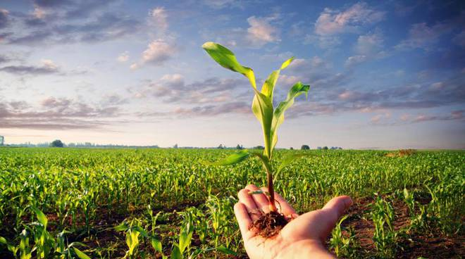 agricoltura  e scienza