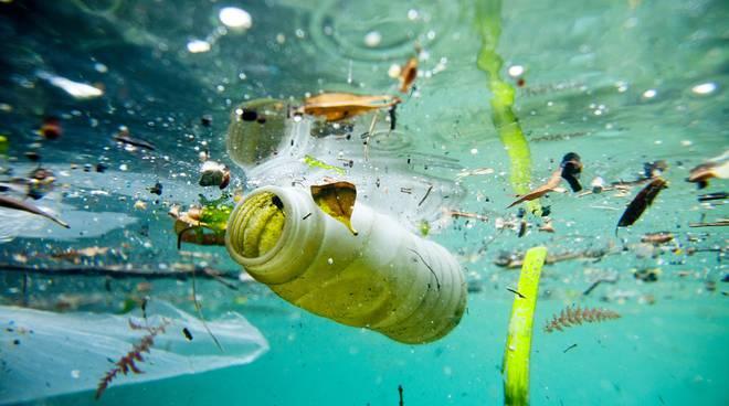 microplastiche plastica mare