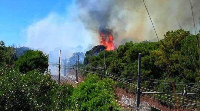 castel fusano incendio