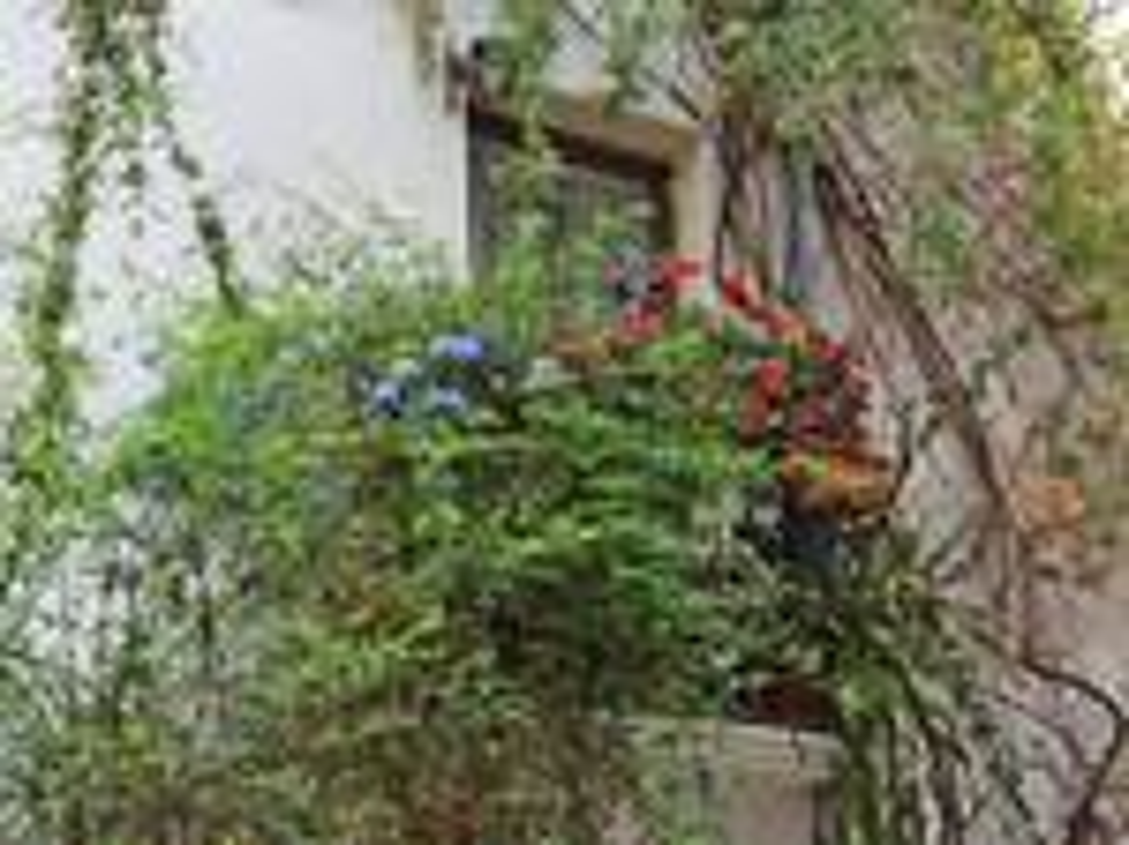 concorso balconi fioriti