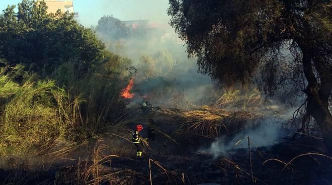 Ostia brucia, in fiamme la pineta delle Acque Rosse