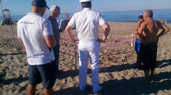 Tartaruga depone le uova sulla spiaggia di #Ardea foto