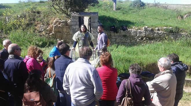 visita guidata tomba degli scudi
