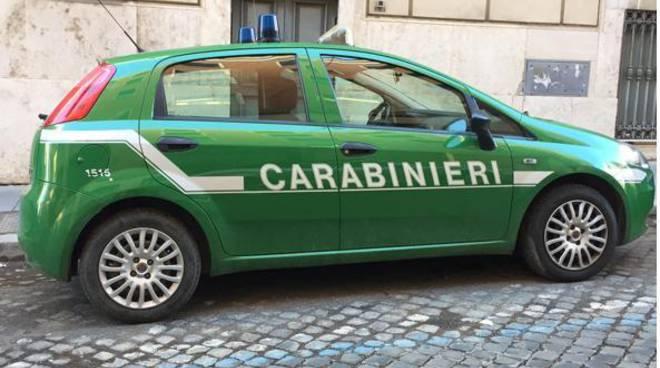 Assisi, i Carabinieri Forestali organizzano la