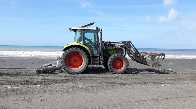 pulizia spiaggia