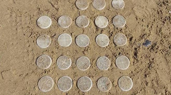 Terracina, ritrovati 28 dischetti sulla spiaggia di Levante