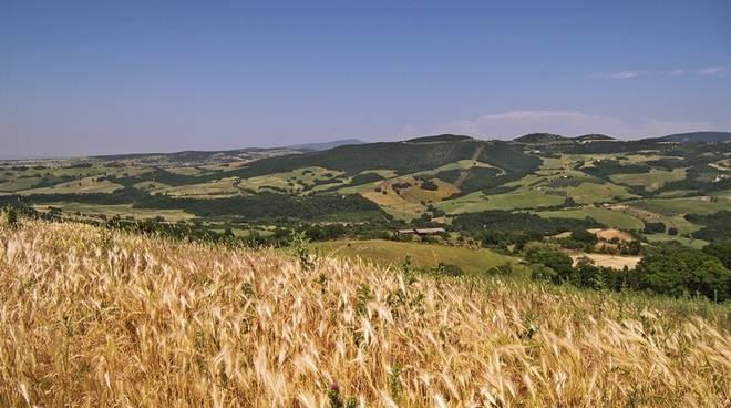 Valle Mignone Tarquinia