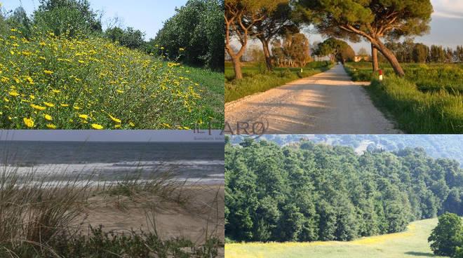 riserva litorale romano