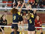 TROFEO ACEA VOLLEY